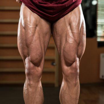 برنامه تمرینی – رشد و تقویت عضلات پا