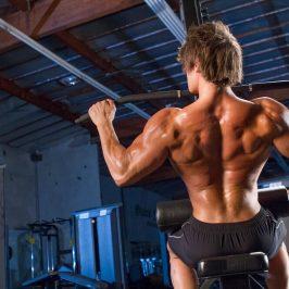 برنامه تمرینی – رشد و تقویت عضلات پشت، زیربغل و جلو بازو در یک زمان